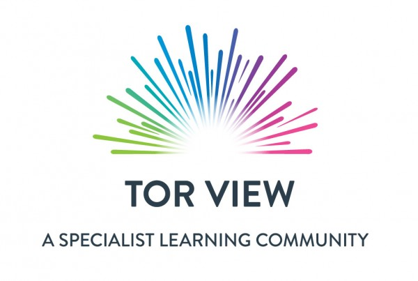 portfolio-torview-specialist-school-branding